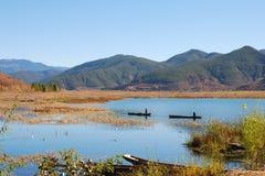 озеро рыб задвижек стоковые изображения