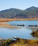 озеро рыб задвижек стоковое изображение rf