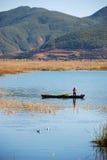озеро рыб задвижек стоковая фотография