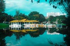 озеро сада стоковая фотография rf