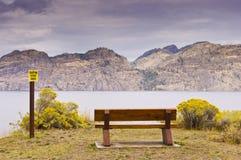Озеро скамейка в парке обозревая Стоковые Изображения RF