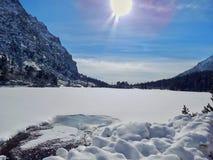 Снег стоковые изображения rf
