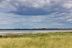 Озеро соли в Гоби стоковые фотографии rf