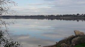 Озеро соли Ларнака зеркала Кипр заволакивает красивый вид Стоковое Изображение