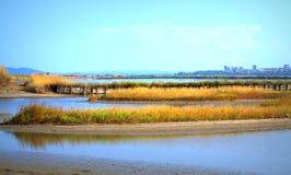 Озеро соли Burgas Atanasovsko Стоковое Изображение RF