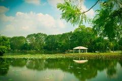 Озеро сработанност Стоковые Изображения