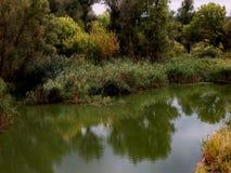 Озеро степ в pridonie Стоковое Изображение