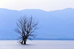 озеро сумрака dojran Стоковое фото RF