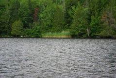 озеро сценарное Стоковые Фотографии RF