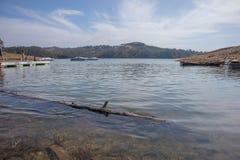 Озеро с деревянный плавать хобота стоковая фотография rf