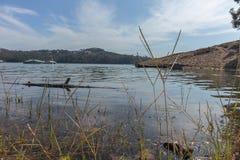 Озеро с деревянный плавать хобота стоковое изображение rf
