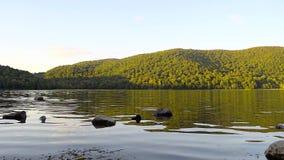 Озеро с немного камней сток-видео