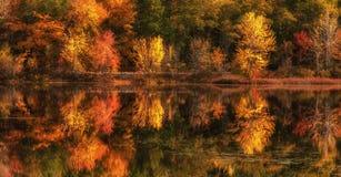 Озеро с отражением красочных деревьев осени в воде стоковая фотография rf