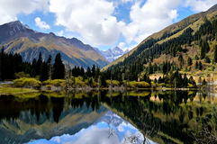 Озеро с отражениями горы снега Стоковые Изображения