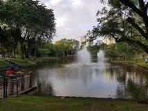 озеро с фонтанами в городе стоковое изображение rf