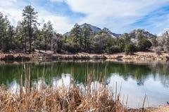 Озеро таз Глуш-гранита горы Аризон-Prescott-гранита Стоковое Изображение RF