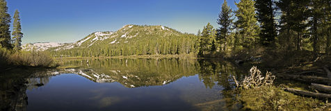 озеро травы Стоковые Фотографии RF