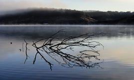 Озеро Трэвис Стоковое фото RF