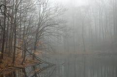 озеро туманное Стоковые Изображения