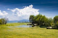 озеро фарфора Стоковая Фотография RF