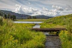 Озеро форел Стоковое Изображение