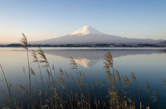 Озеро Фудзи Kawakuchiko горы Стоковые Изображения RF