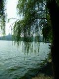 Озеро Ханчжоу западное Стоковые Изображения RF