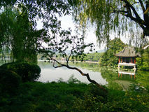 Озеро Ханчжоу западное Стоковое Изображение