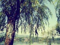Озеро Ханчжоу западное Стоковые Фотографии RF