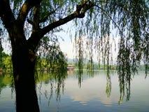 Озеро Ханчжоу западное Стоковое Изображение RF