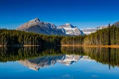 Озеро Херберт Стоковое Фото