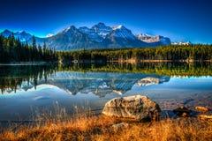 Озеро Херберт Стоковое Изображение RF