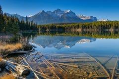 Озеро Херберт Стоковые Изображения