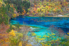 озеро цвета Стоковые Фото