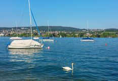 Озеро Цюрих в Швейцарии Стоковые Фото