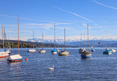 Озеро Цюрих Стоковые Изображения