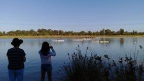 Озеро чемпион Стоковое Фото