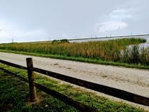 Озеро Стоковые Фотографии RF