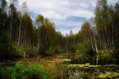 озеро 2 осеней Стоковое Изображение RF
