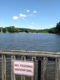 Озеро. Стоковая Фотография
