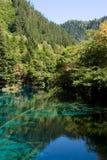озеро 5 цветков Стоковые Фотографии RF