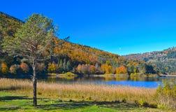 Озеро Abant в Bolu Стоковое Изображение RF