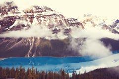 озеро alberta banff Канады обнаружило местонахождение peyto национального парка Стоковая Фотография RF