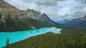 озеро alberta banff Канады обнаружило местонахождение peyto национального парка сток-видео