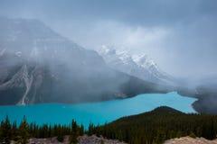 озеро alberta banff Канады обнаружило местонахождение peyto национального парка Стоковое Изображение RF