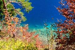 Озеро Alpsee Бавария Германия Стоковое Изображение