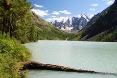 озеро altai Стоковое Изображение RF