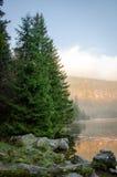 Озеро Arbersee Стоковые Фотографии RF