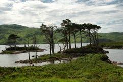 Озеро Assynt Стоковая Фотография