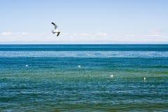 озеро baikal Стоковые Фотографии RF